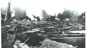 Millpond at the Upper Preston Sawmill