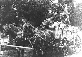 Wagon Load of Wood