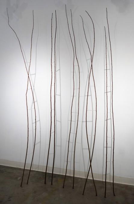 Random Ladder, 2010