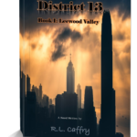 District 13: Leewood Valley