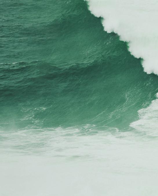wave (1)