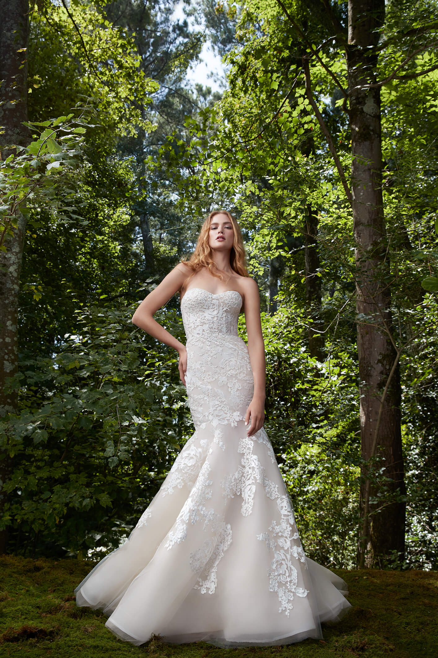 Bliss by Anne Barge is the strapless demi corseted bodice and mermaid skirt complimented by appliqued allover with rose embroidered lace.