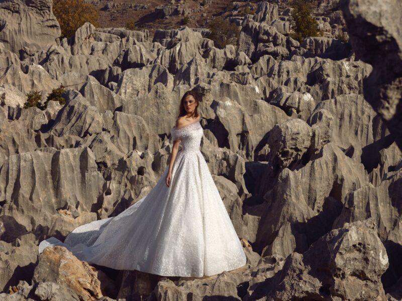 Stella bridal gown by Tony Ward