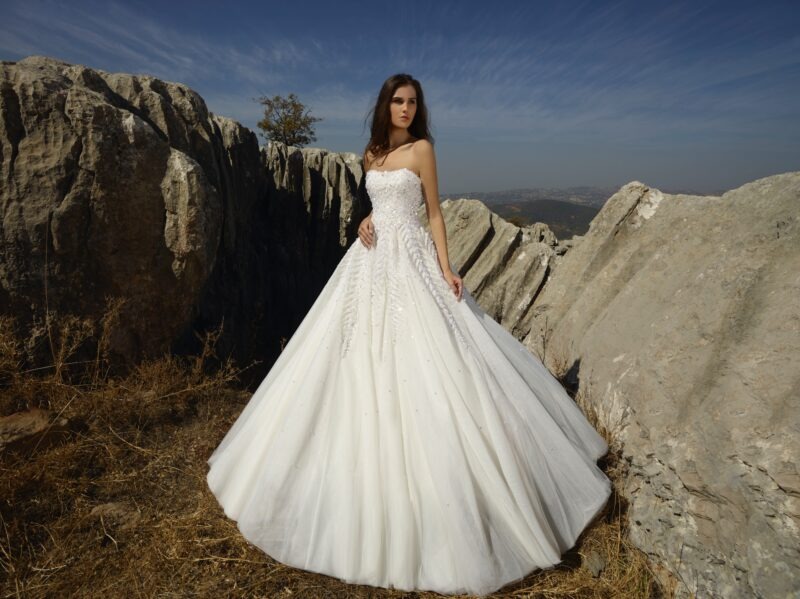 Winter Rose bridal gown by Tony Ward