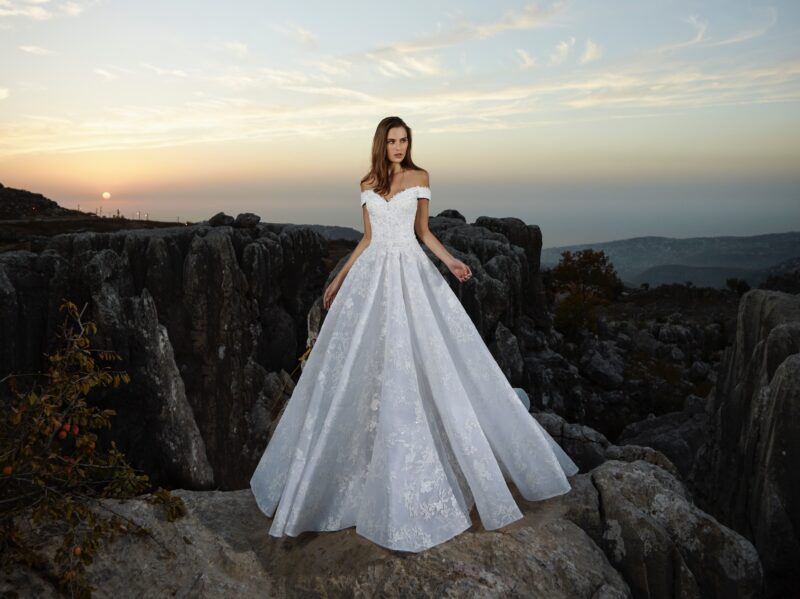 Alhena bridal gown by Tony Ward