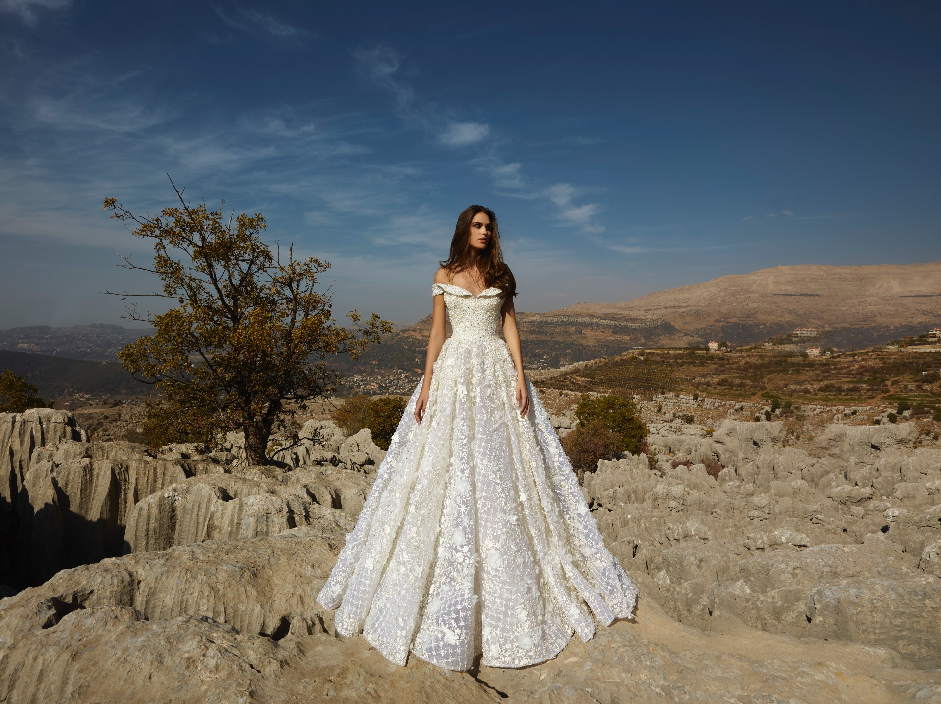 Night Gift Bridal Gown By Tony Ward