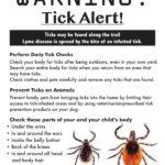 Prevent Lyme Disease