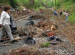 cynwyd-trail-clean-up.jpg