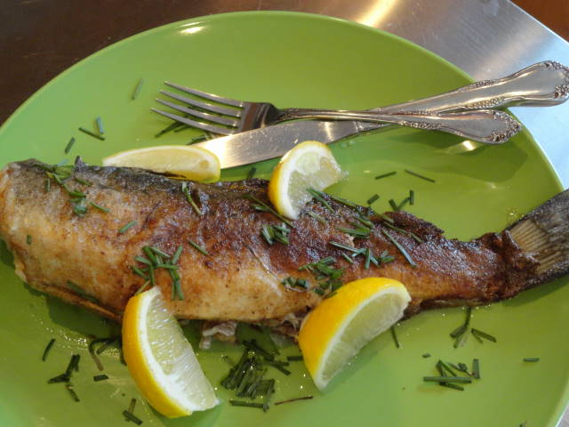 Old fashiong pan fried trout