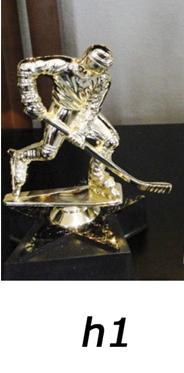 Hockey Trophy – h1