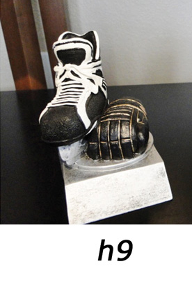 Hockey Trophy – h9