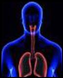 respiratory-diseases
