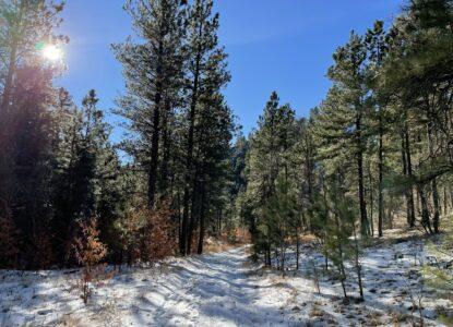 Bear Gulch Hiking Black Hills