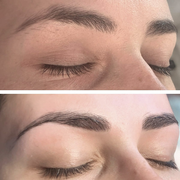 Tayla Shreeve Brows