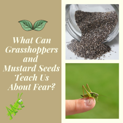 What Can Grasshoppers and Mustard Seeds Teach Us About Fear?