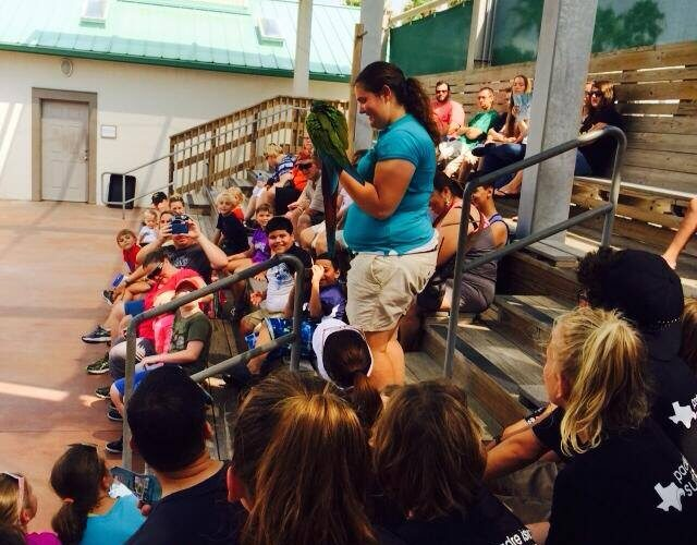surf camp texas state aquarium