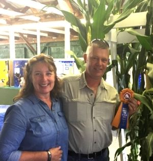 Ray and Donna Brands are pictured with their award-winning corn. Ray holds an orange and blue award ribbon. They are both smiling at the camera.