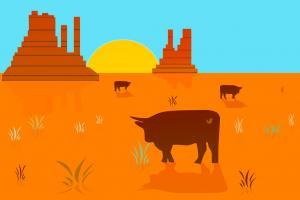 Southwestern cow