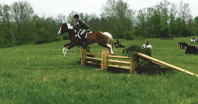 Lease a Hunt Horse, or Show Horse