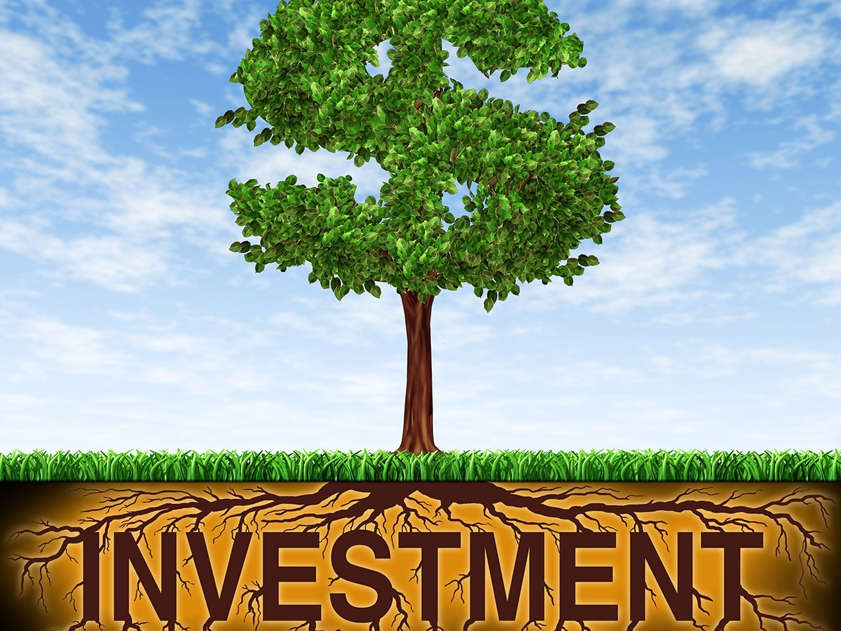 Budget 2016 and your investments