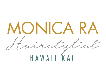 monica ra hairstylist log