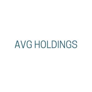 AVG Holdings