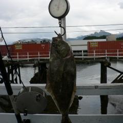 Fishing 07 147