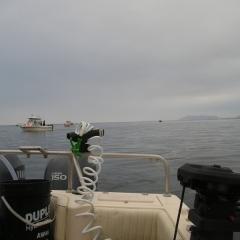 Fishing 005