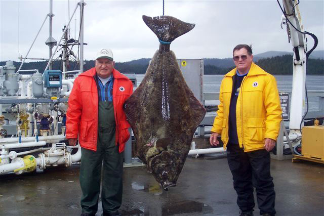 Halibut Fishing Charter Prince Rupert