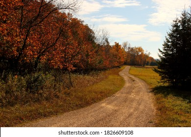 Stock image dirt road with trees in autumn