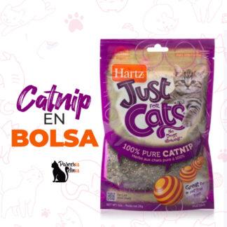 Catnip En Bolsa 1 Oz Just For Cats Hartz parceros felinos