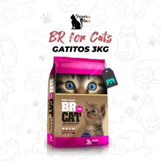 BR FOR CAT GATITOS 3 kg