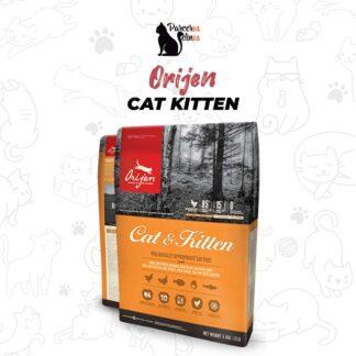 Orijen Cat Kitten