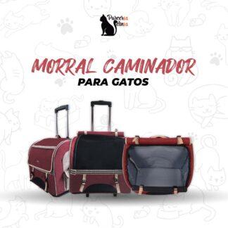 MORRAL CAMINADOR PARA GATOS