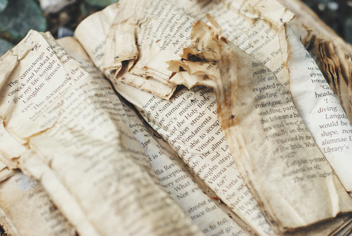 How condition affects the value of books