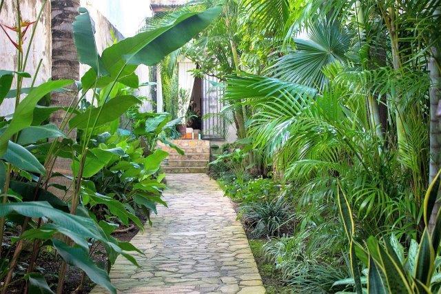 Casa-Colonial-Nicaragua (40)