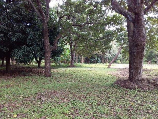 Farm-for-sale-nicaragua (16)