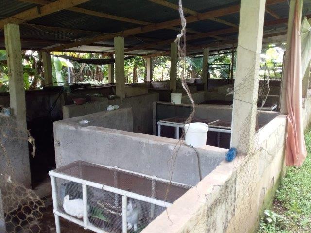Farm-for-sale-nicaragua (17)