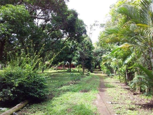 Farm-for-sale-nicaragua (23)