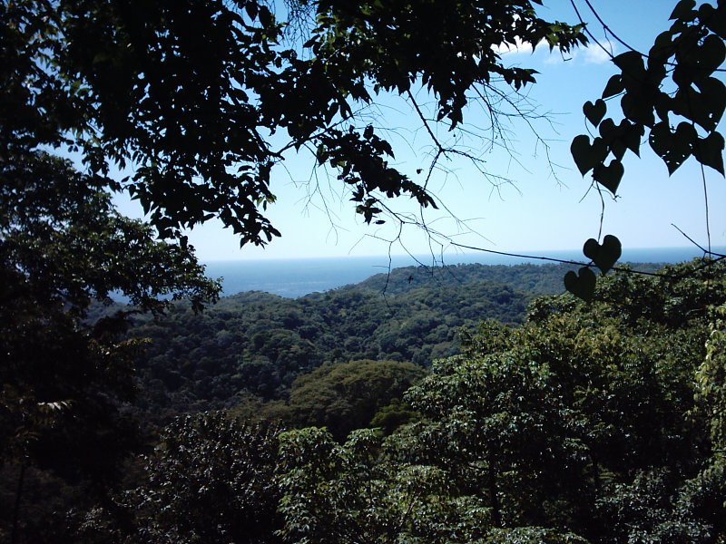 Nicaragua-Real-Estate-finca-ostional (12)
