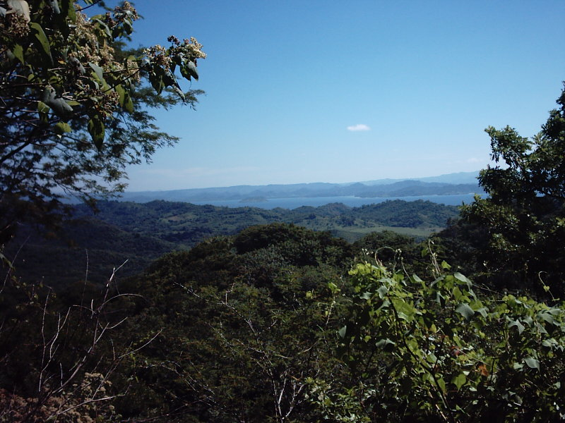 Nicaragua-Real-Estate-finca-ostional (14)