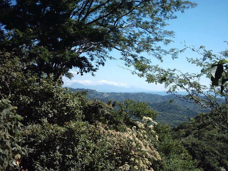 Nicaragua-Real-Estate-finca-ostional (15)