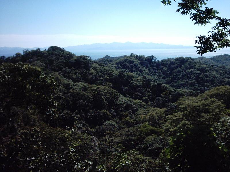 Nicaragua-Real-Estate-finca-ostional (6)