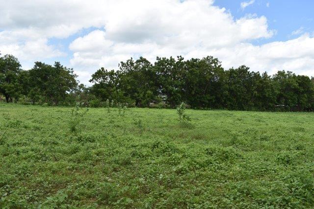 Nicaragua-bienes-raices-finca-san-rafael (3)