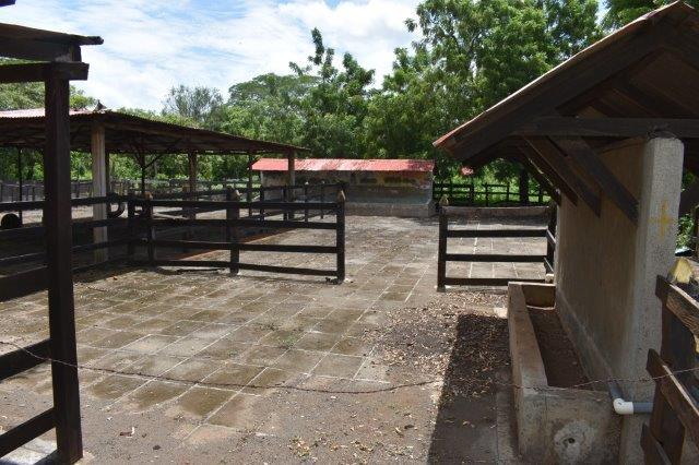 Nicaragua-bienes-raices-finca-san-rafael (5)