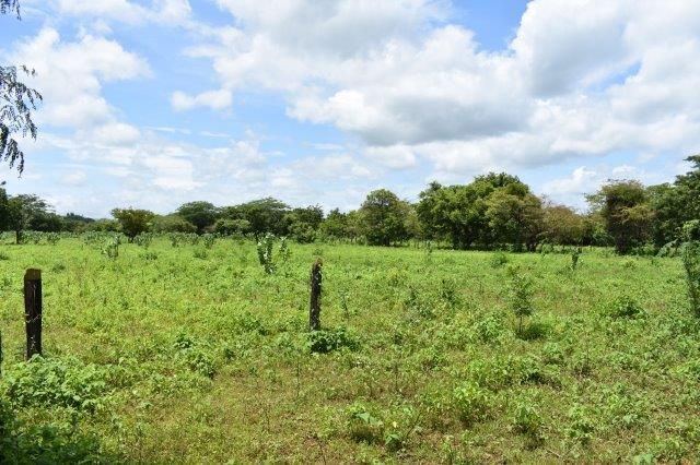 Nicaragua-bienes-raices-finca-san-rafael (8)