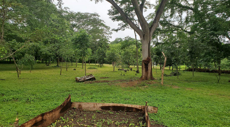 Nicaragua+Real+Estate+Eco+San+Juan+del+Sur+Beach+Playa+NicaraguaRealEstateTeam+1 (78)