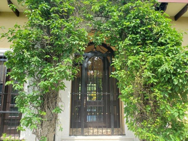 Real-Estate-Nicaragua-Managua-Casa-venta-Pool (93) - Copy