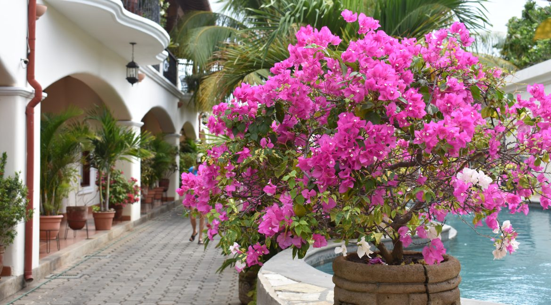 nicaragua-real-estate-condo-xalteva-granada-nicaragua (14)