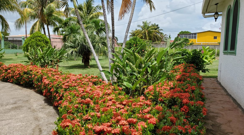 real-estate-nicaragua (4)